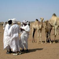 SUDANESE