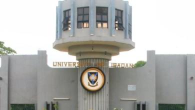 UNIVERSITY OF IBADAN POST