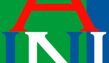 American University of Nigeria courses
