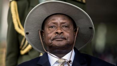 UGANDAN LECTURER