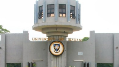 UNIVERSITY OF IBADAN BUSINESS