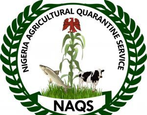 CHECK NAQS SHORTLISTED CANDIDATE 2020/2021