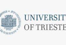 UNIVERSITY OF TRIESTE ICTP SCHOLARSHIPS 2021 APPLICATION PORTAL OPEN